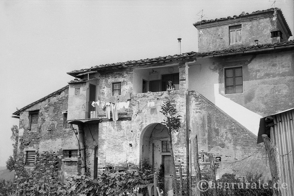 Case Rurali Toscane : Case rurali in toscana catalogo vignale